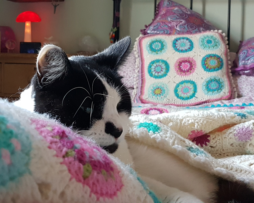 buried-in-the-crochet