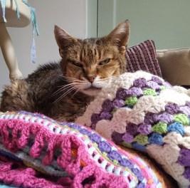 tigger-in-the-blankets