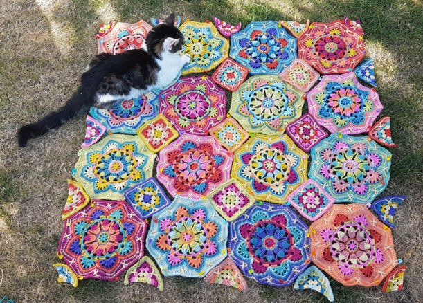 Persian-tiles-and-Minnie