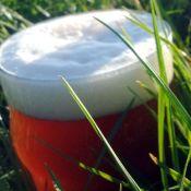Saison - idealne piwo na lato