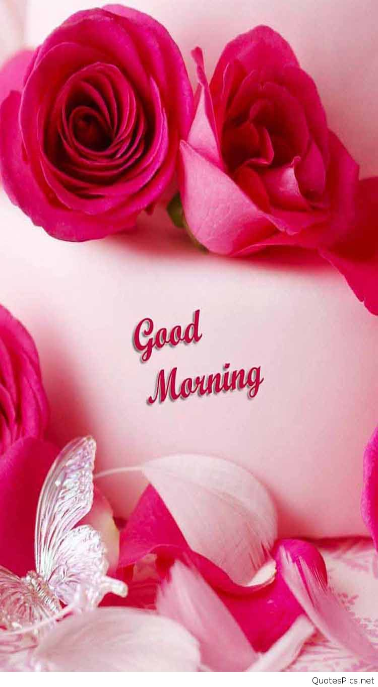 good-morning-rose-flower-wish-friends-pics-mojly-images-Good