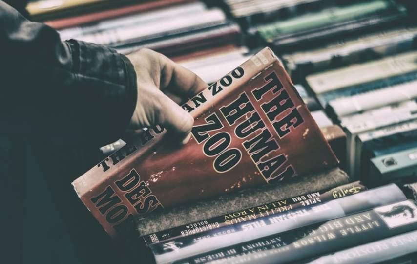 Mengapa Penerbit Tak Tertarik Menerbitkan Karya Penulis yang Followernya Sedikit?