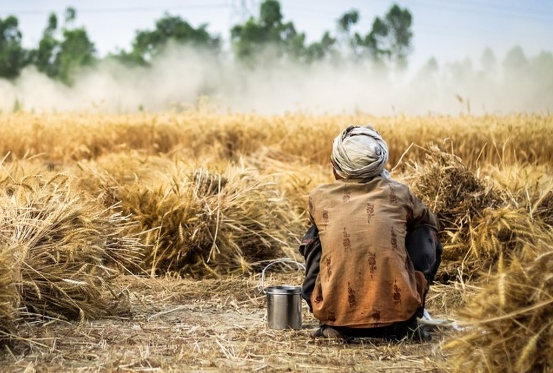 lebaran sederhana ala sayyidina ali bin abi thalib petani ladang miskin sederhana mojok.co