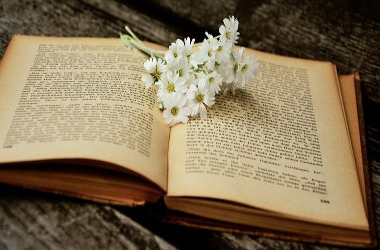 Bacaan Wajib Sebelum Memutuskan Minggat dari Rumah Demi Cinta