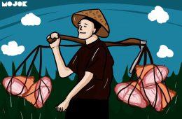 petani HAM