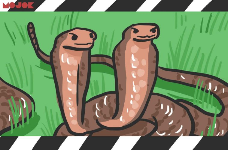 cara membedakan genre film dengan menggunakan analogi ular mojok.co