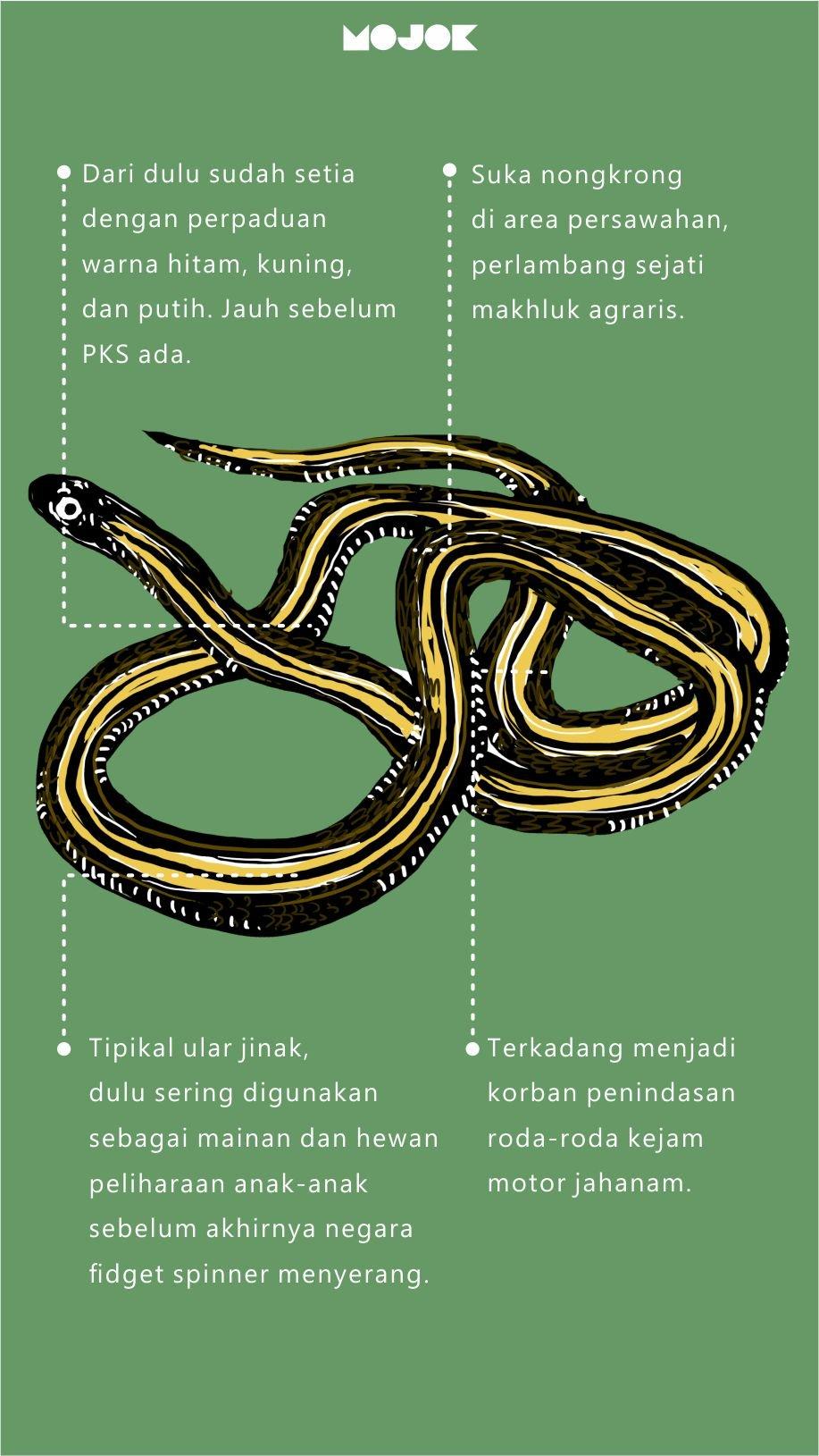 ular lareangon