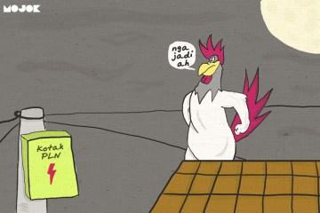 Ayam-Bunuh-Diri-MOJOK.CO