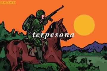 Masih Adakah Satuan Kavaleri Berkuda di Tentara Indonesia?