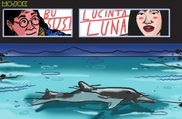 Aksi Renang Lucinta Luna Bersama Lumba-Lumba Dikecam Aktivis, Artis, Sampai Mantan Menteri KKP Susi Pudjiastuti