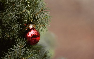 Kansas City Christmas Tree Drop Off Locations