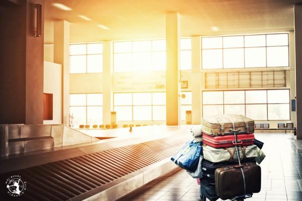 Zagubione bagaże na lotnisku
