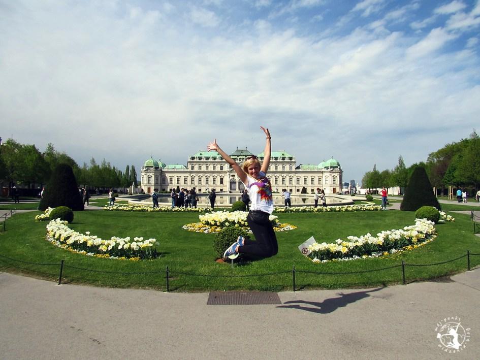 Mój Punkt Widzenia Blog - co trzeba zobaczyć w Wiedniu, atrakcje i skok, Austria