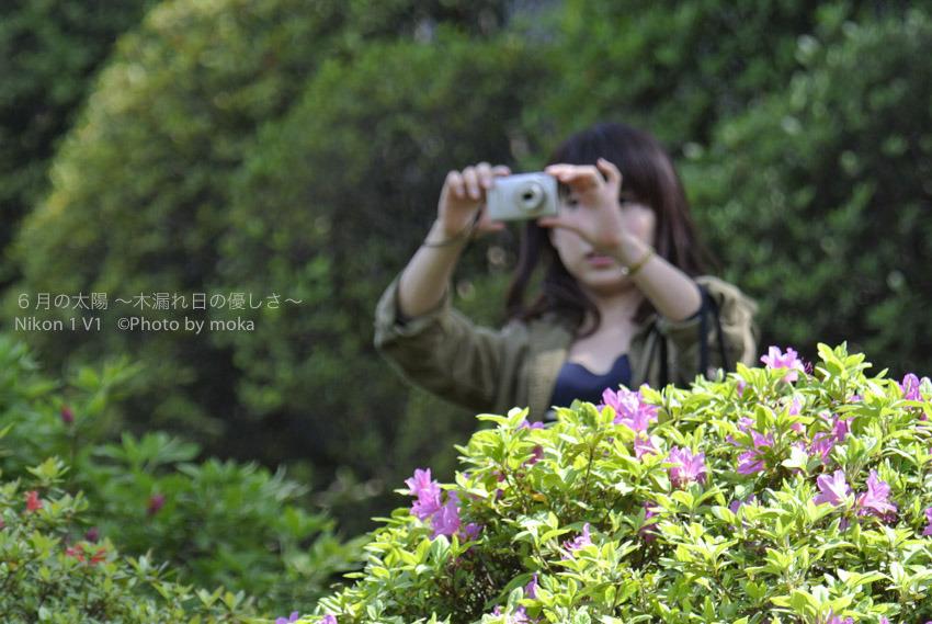 [6]根津神社で・・撮る人を撮る