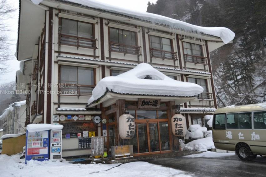 20110114_kaniyu04