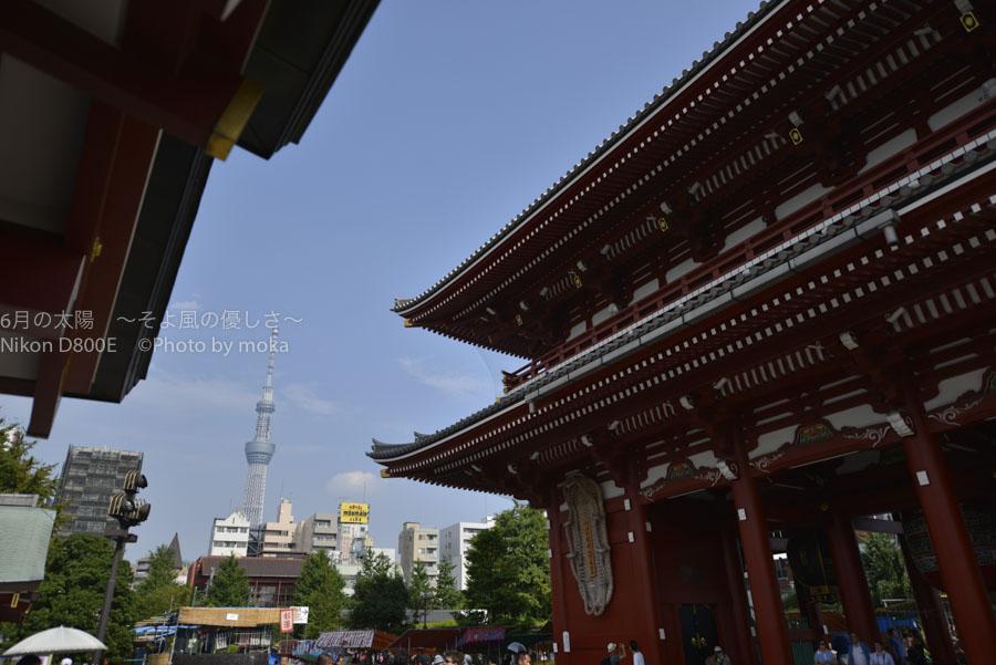 [6]夏を前にした浅草寺