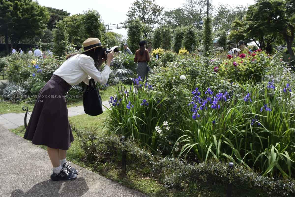 [6]春の花とベイブリッジを一緒に撮ろう!