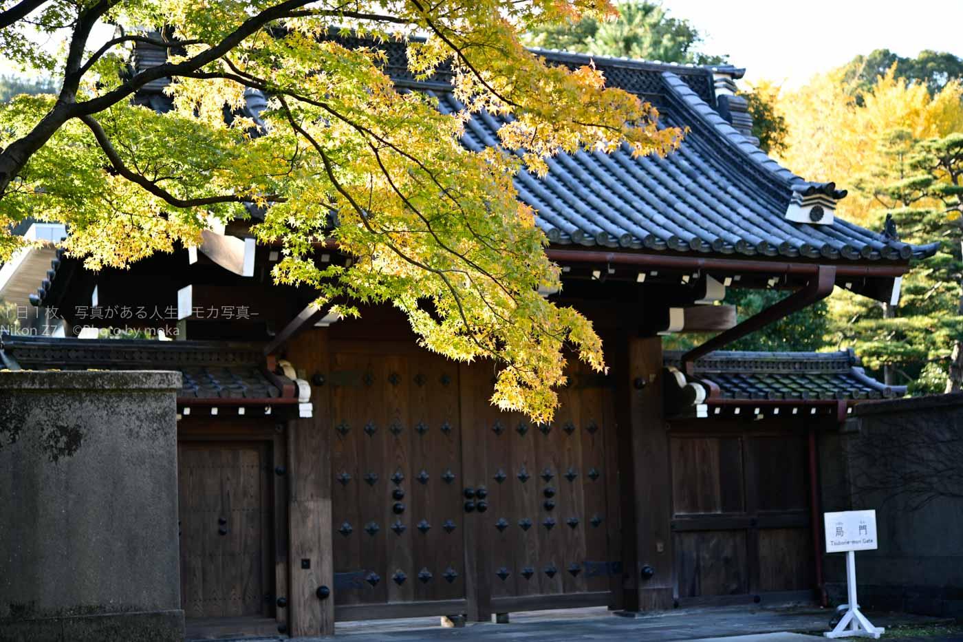 【大奥に一番近い?】普段、見ることができない江戸城の門「局門」