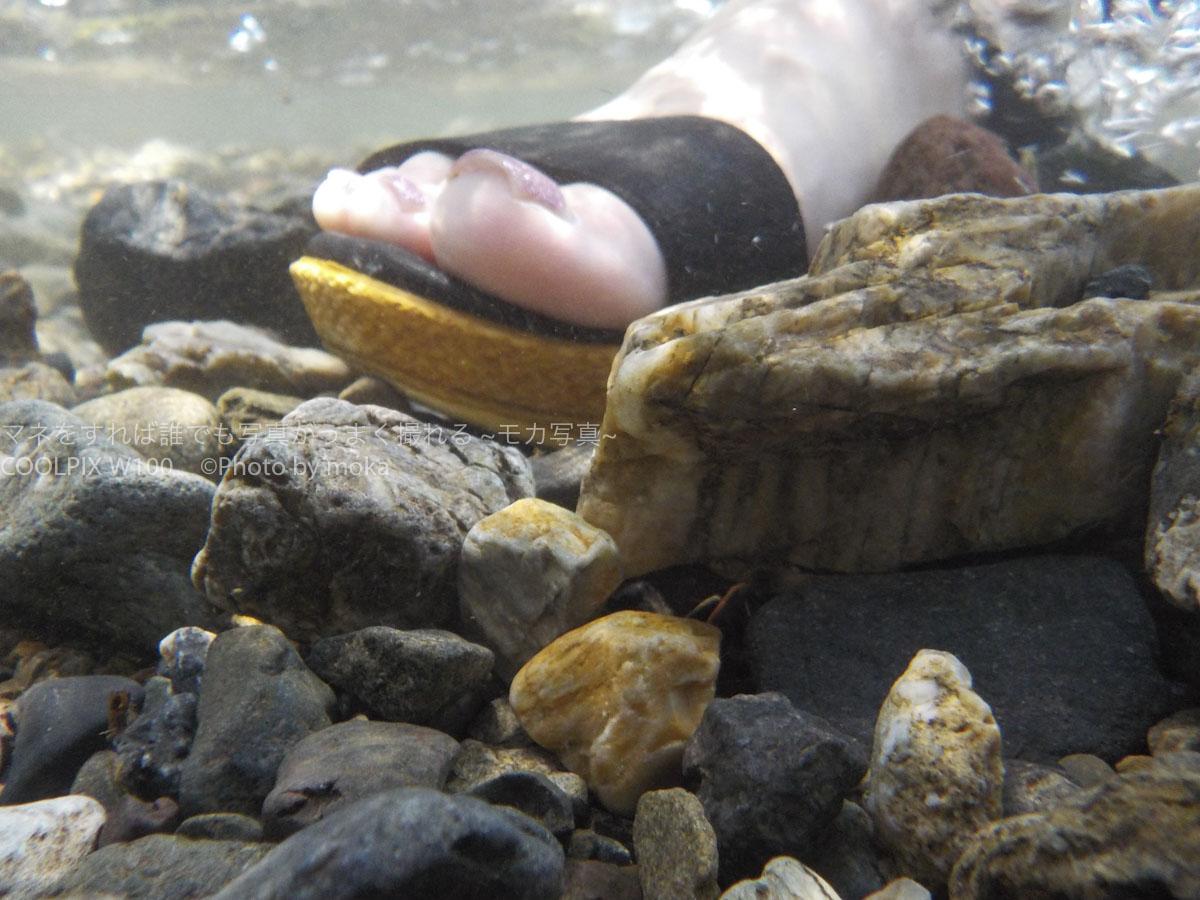 【スナップ撮影】川の中から、カッパ目線で写真を撮ってみた!