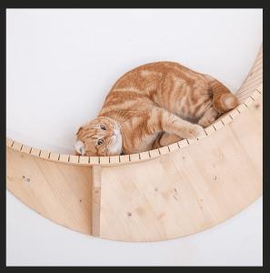 猫 三日月