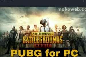 Pubg for PC (Playerunknown Battlegrounds)