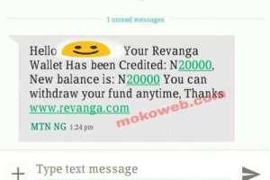 Revanga earnings