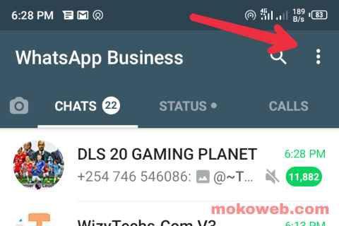 Whatsapp menu settings