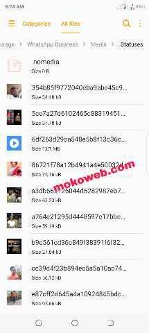 View hidden Whatsapp status