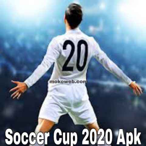 Soccer cup 2020 game