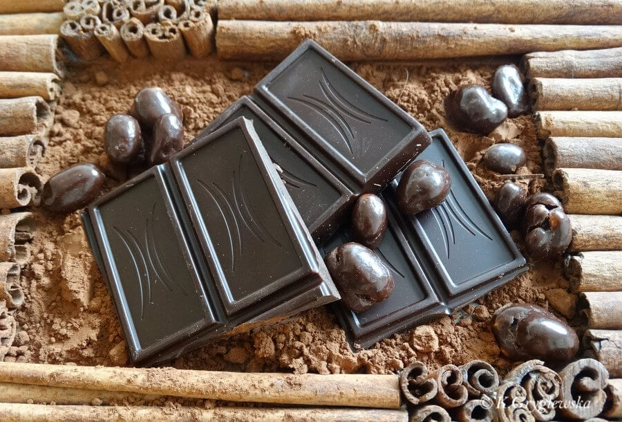 czekolada dla psa