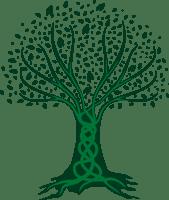 transformación ambiental