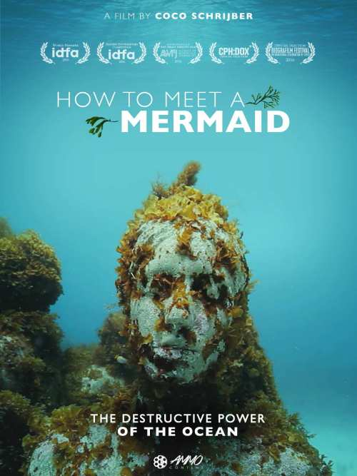 how to meet a mermaid