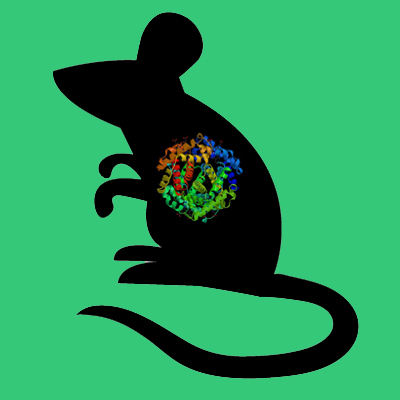 Recombinant Mouse Coagulation Factor XIIa