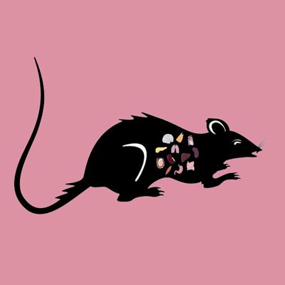 Rat Liver Lyophilized Powder