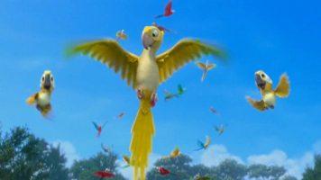 Детский клип - Пара попугаев