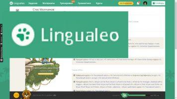 LINGUALEO - урок английского языка
