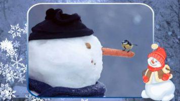 Новогодняя песня - Снеговик