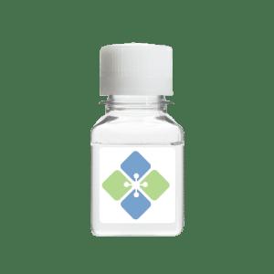 Peroxidase Stabilizing Buffer Solution