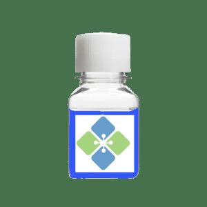 Laemmli Lysis Buffer (Biotechnology Grade)