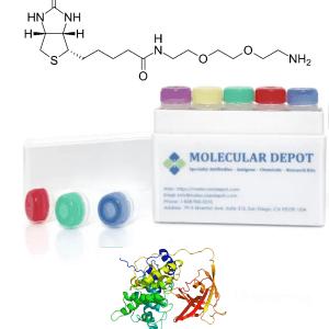 UltraFast Antibody Biotinylation Kit (mg scale, 1 reaction)