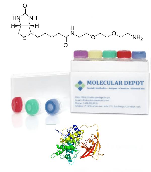 UltraFast Antibody and Protein Biotinylation Kit (mg scale, 20 reactions)