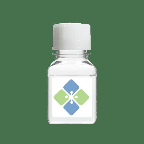 Biotin BSA (Biotinylated BSA)