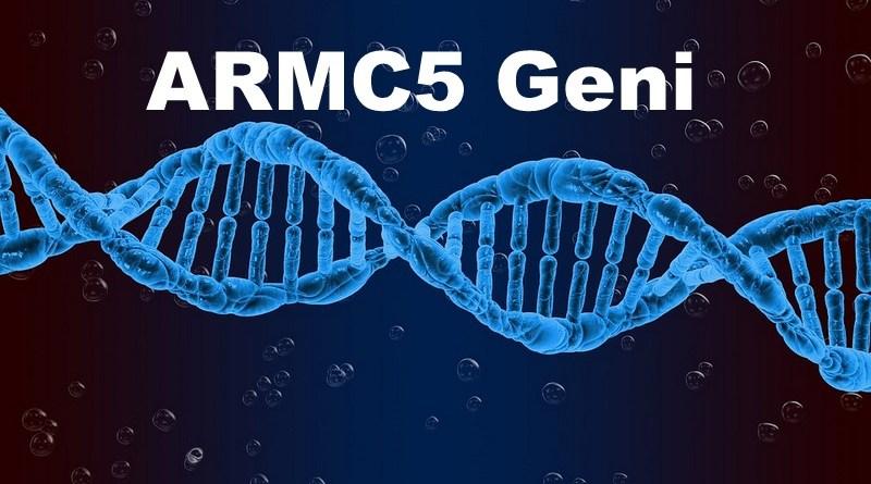 ARMC5 Geni Nedir?