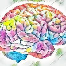 Kronik, lokal intraserebral ilaç verilmesi için minyatür nöral sistem