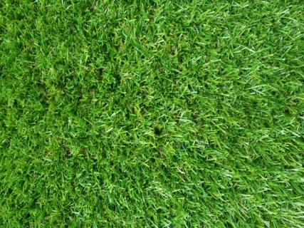false-green-grass-wallpaper