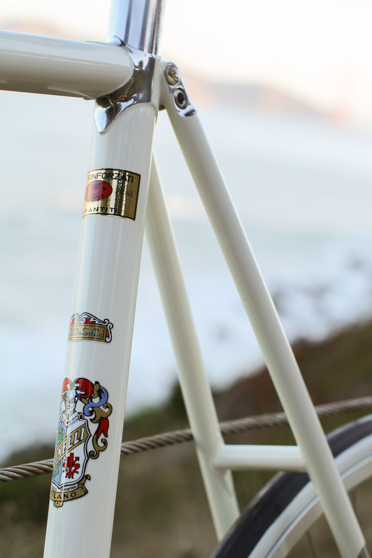 cinelli (10 of 73)