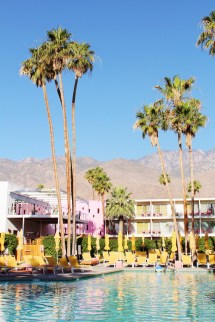 Saguaro Palm Springs Mollie Moore