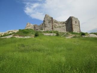 Novebird castle