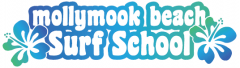 Mollymook Beach Surf School