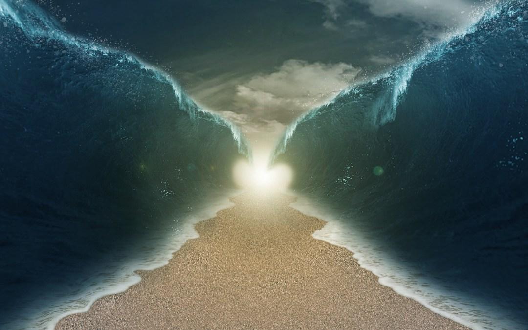 The Advent Movement | Survey 16, Part 2